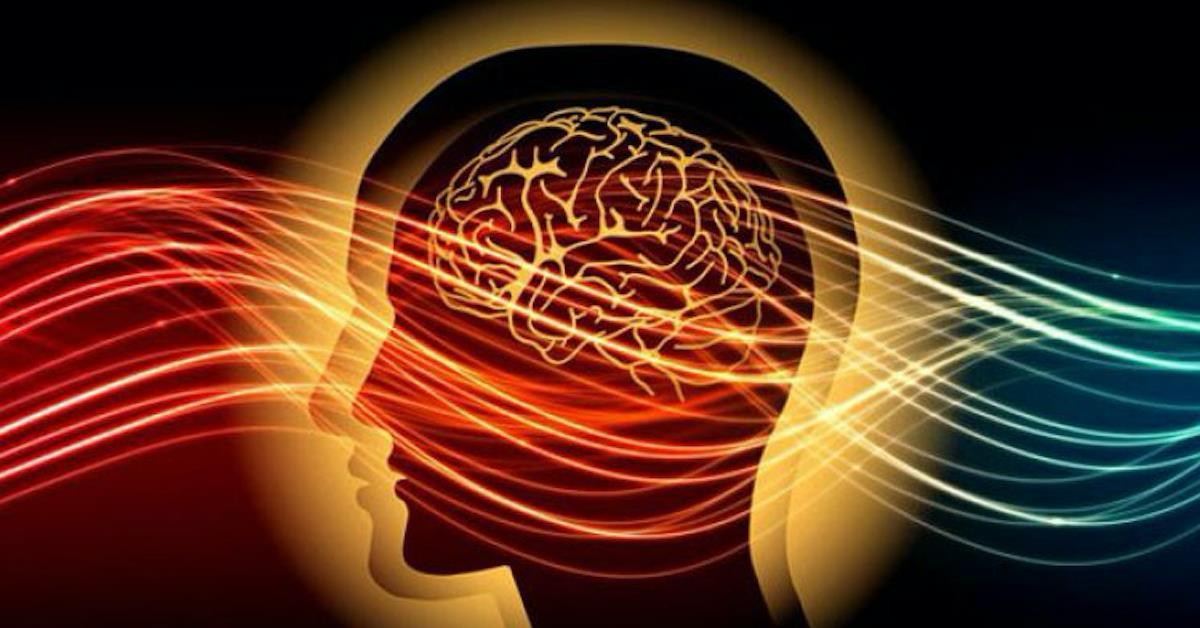 [Hướng dẫn toàn diện về tâm lý giao dịch] PHẦN 10. VẤN ĐỀ CỦA NỖI SỢ