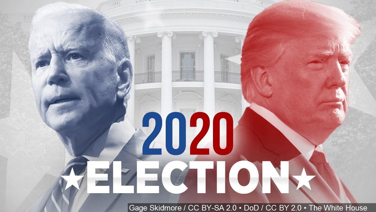 Infographic bầu cử tổng thống Mỹ - Những điều cơ bản cần biết trước giờ G